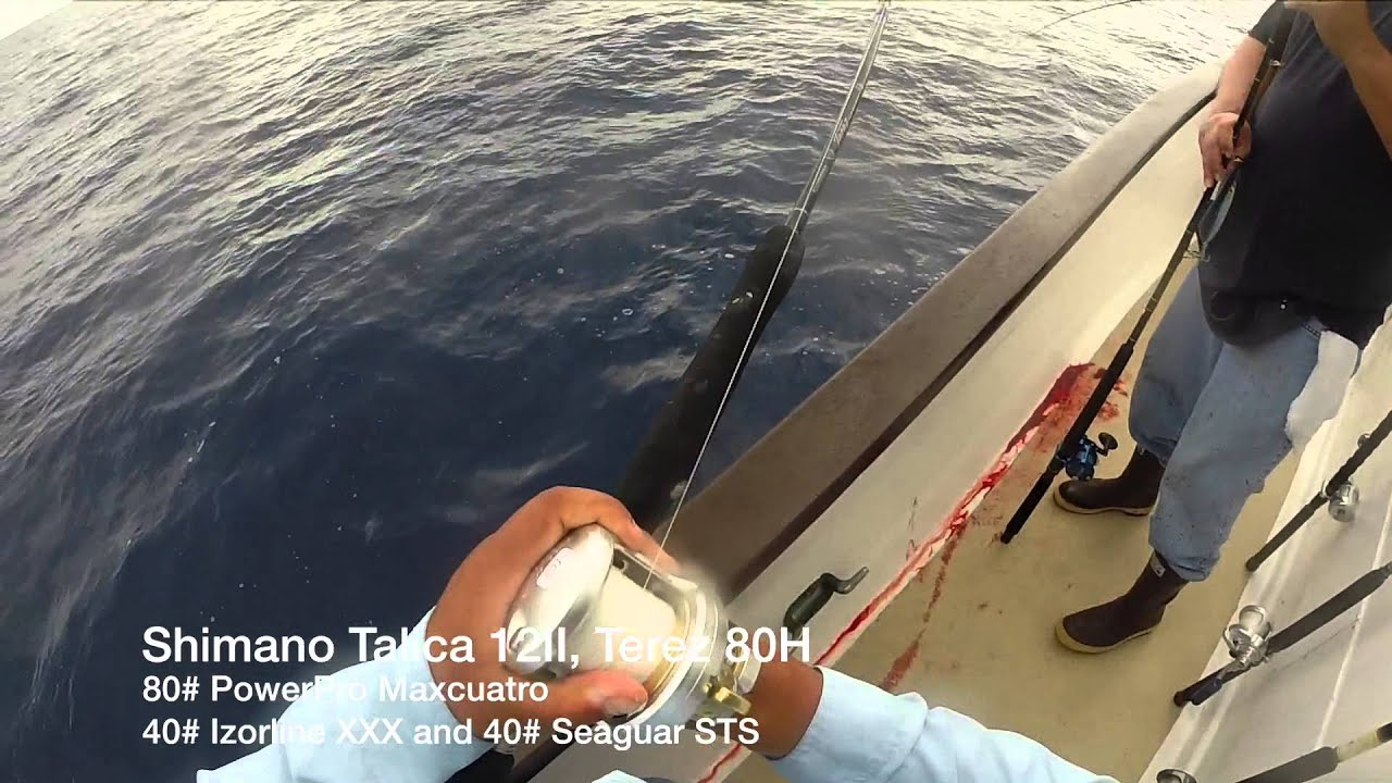 Tuna fishing san diego ca seaforth sportfishing for Seaforth landing fish report