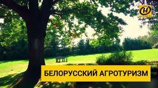 агроусадьба. Агротуризм в Беларуси. Выгодно ли? Кто клиенты?