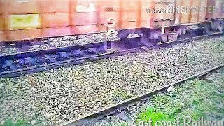 Dog get crushed under the train  dog is lucky or unlucky