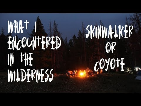 Download 5 Allegedly True Scary Skinwalker Encounter Stories Cryptid