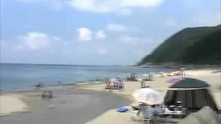 渚のオールスターズ - 夏に有頂天
