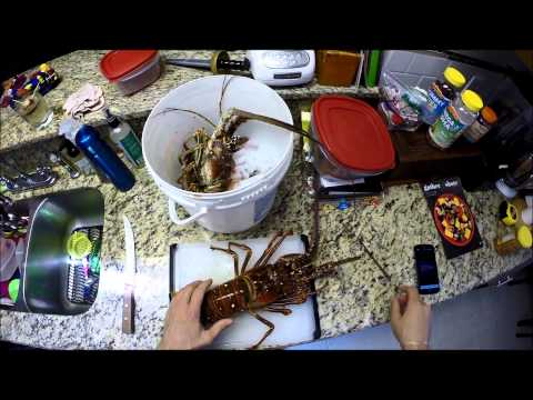 Lobster tail | Florida Spiny Lobster | Clean and Cook