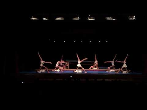 Spectacle gym Fsg Versoix - C4 2017