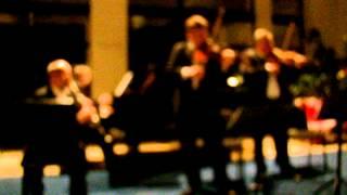 Johann Strauss (fiul) - Dunarea albastra