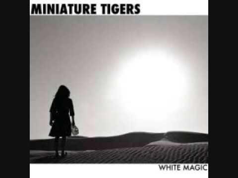 dino damage miniature tigers