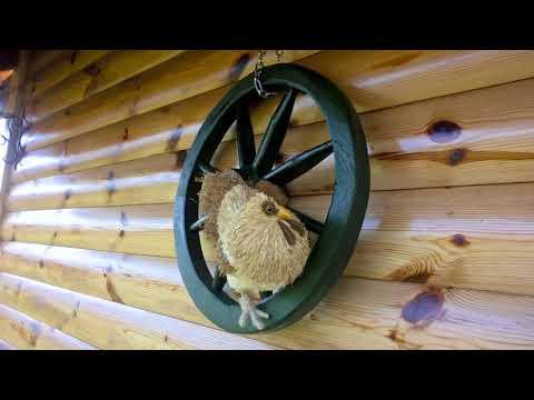 Trzic (Croatia) -  Koka´s ranch & cottage