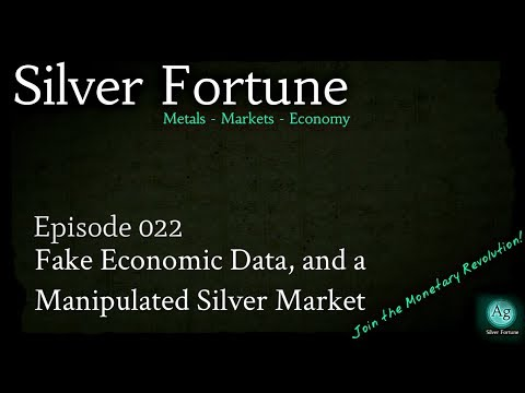 Fake Economic Data, and a Manipulated Silver Market - Episode 022
