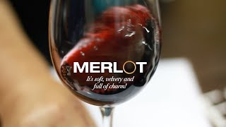 Make a date with Merlot | Wine Selectors