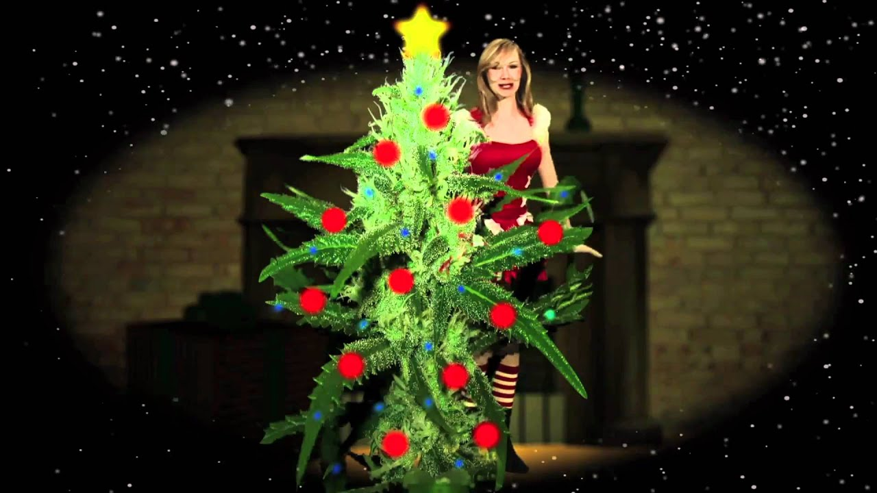 O Christmas Weed! How Lovely Are Your Nuggets! MaryJane-mas - YouTube