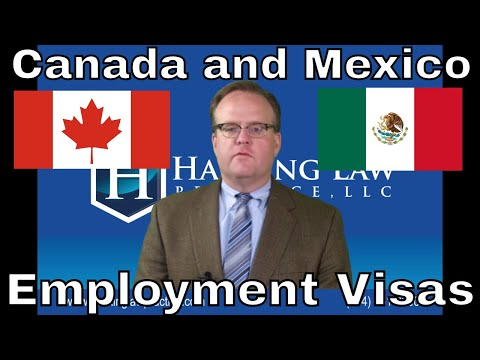 Are there special employment visas in the U.S. for people from Canada and Mexico?