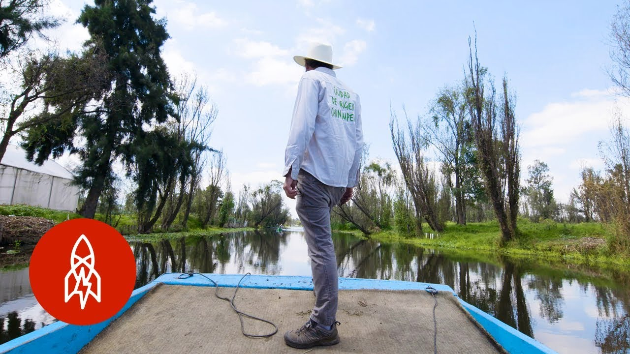 Fighting to Keep Mexico's Floating Farms Alive