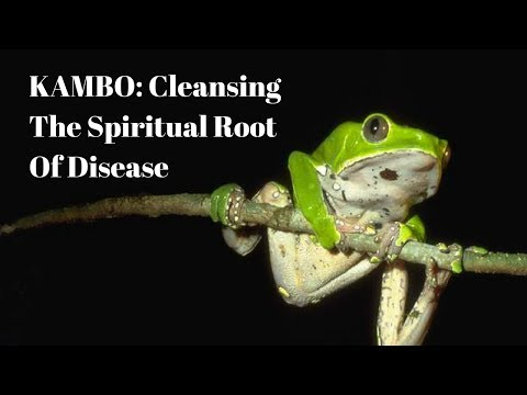 KAMBO: Cleansing The Spiritual Root Of Disease w/ Tobias Thon ~ Ep. 51