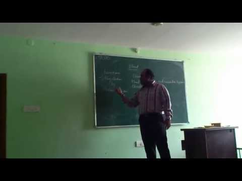 my lecture video