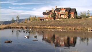 Home Reflection in pond with geese Colorado Living