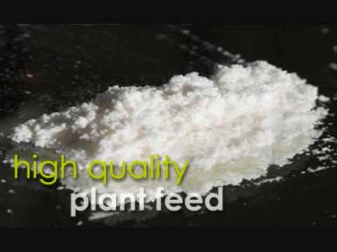 Mephedrone - Chemistry Behind the Headlines 1