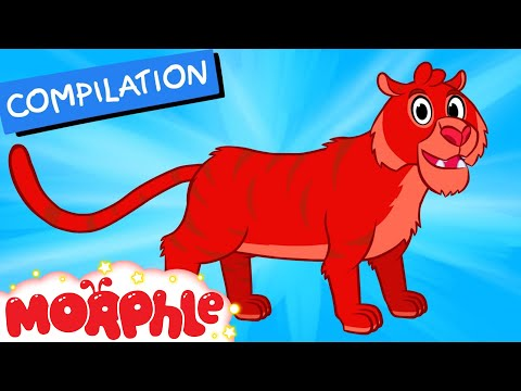 My Pet Tiger (+Morphle compilation) My Magic Pet Morphle Episode 32
