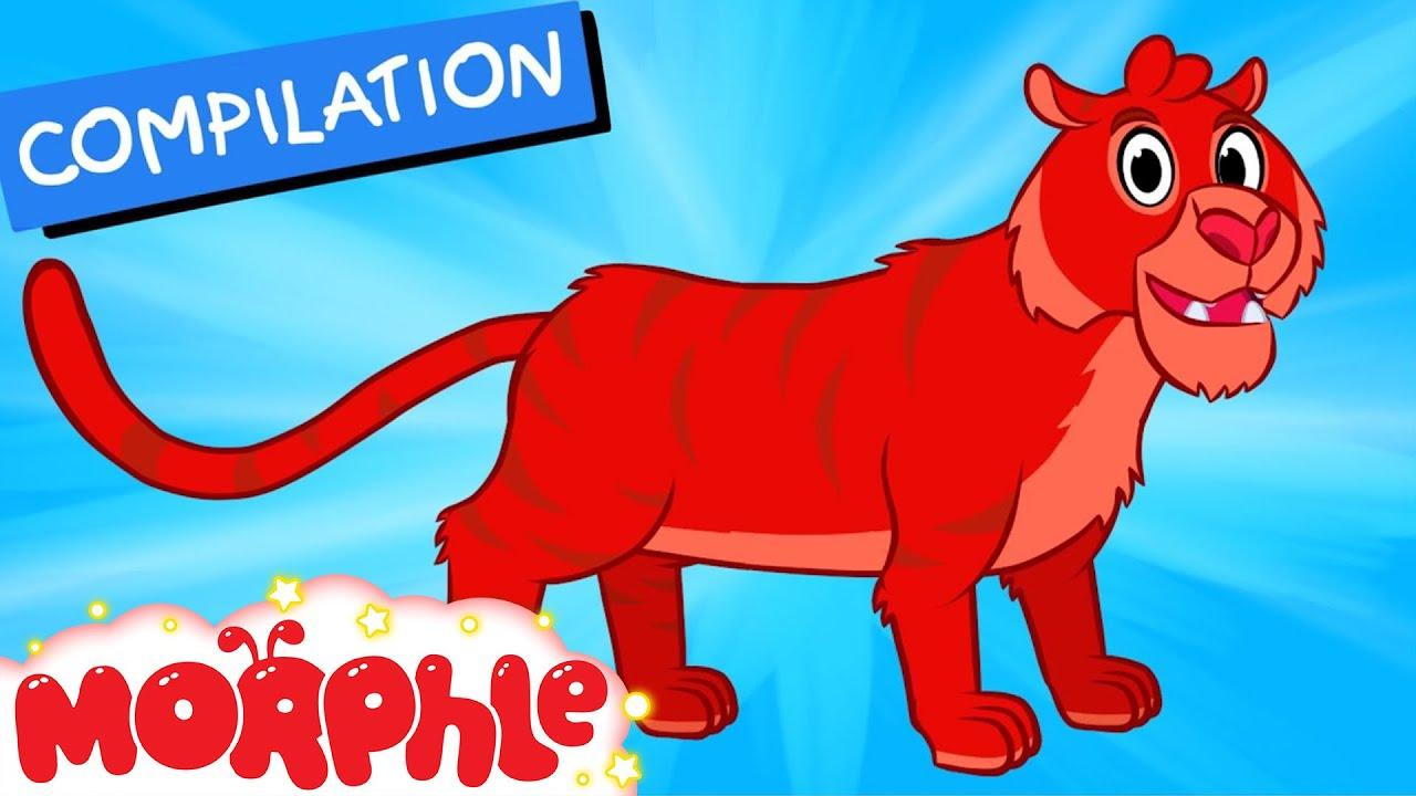 My Pet Tiger  - My Magic Pet Morphle Episode 32