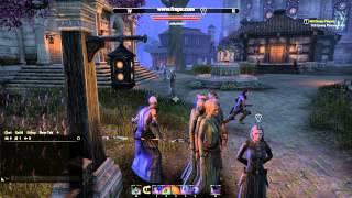 River of Bots - Hollow City, Elder Scrolls Online