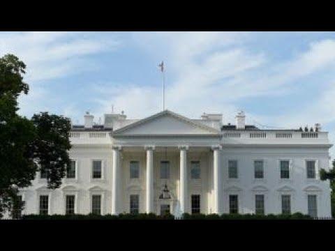 Judge Napolitano Schools Fox Business Host on Jim Acosta Lawsuit: CNN Has a 'Very Good Case'
