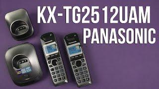 Распаковка Panasonic KX-TG2512UAM