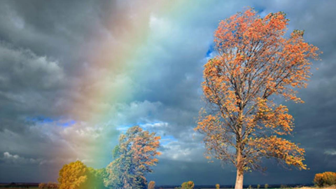 Картинки по запросу с прокоф'єв дощ і веселка