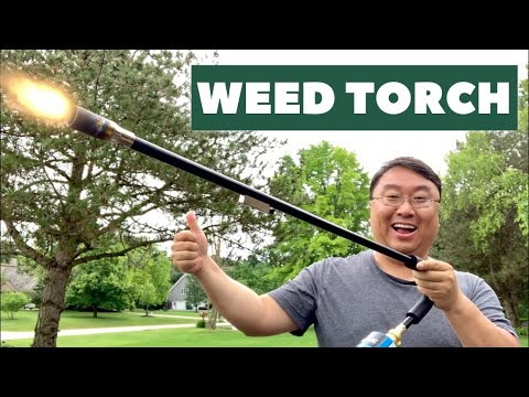 Propane Weed Torch Review Youtube