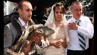 Photo fun girls wedding   фото приколы свадьба № 7