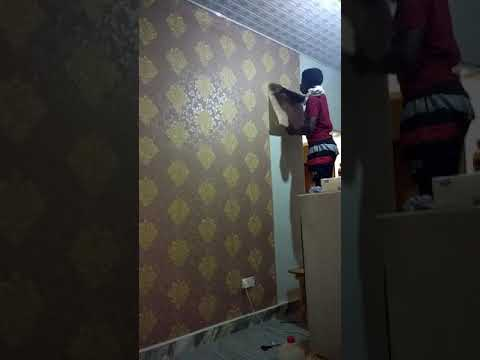 """Time Is Money Wallpaper Installations And Master Painters. """"feel The Mark Of Perfection"""" 0555758261"""