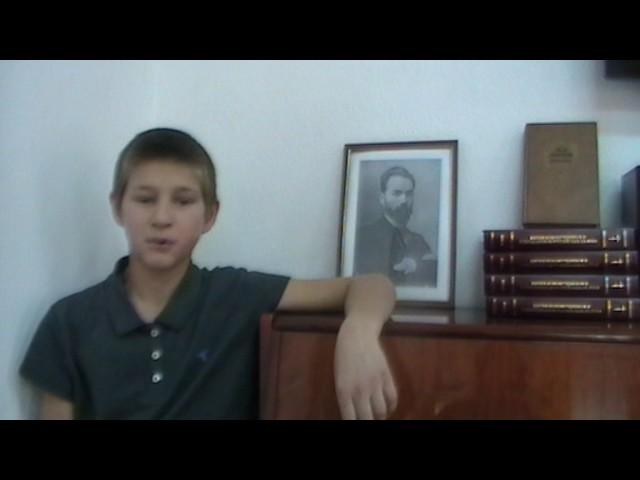 Изображение предпросмотра прочтения – СпиридонМедяков читает произведение «Летняя гроза» В.Я.Брюсова