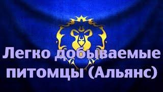 Легко добываемые питомцы (Альянс)(, 2014-09-10T14:49:34.000Z)
