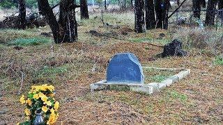 Домашних животных в Югре хоронить нельзя: что же делать с умершими питомцами?