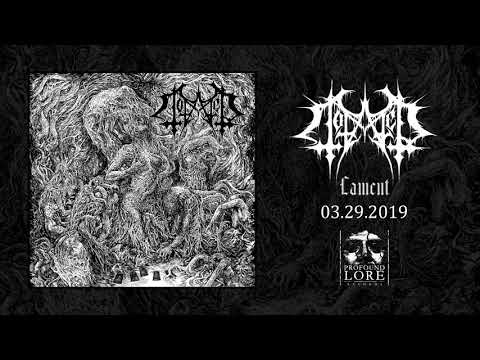 TOTALED - Transience (official audio)