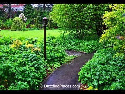 A Summer Walk on the Seattle University Campus