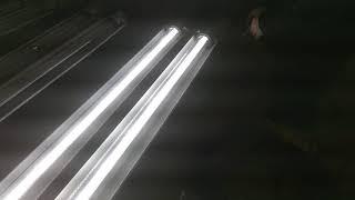 170488 3 X EPL 48 2L LED D V2 PND 56K 1
