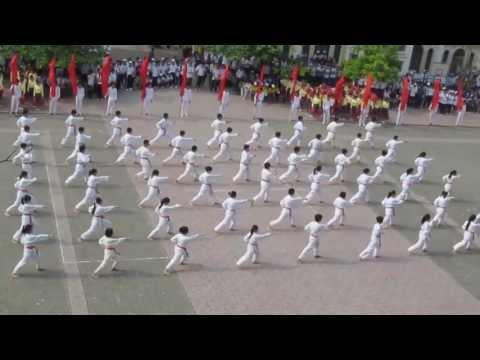 [Khai mạc Đại hội TDTT] Đồng diễn võ thuật