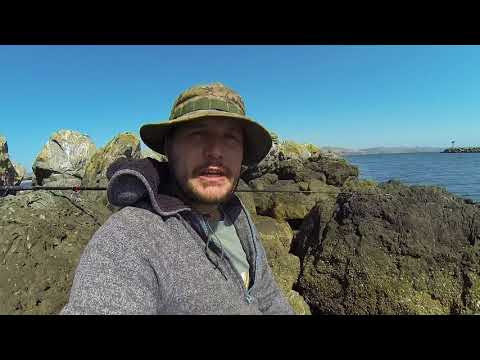 Doran Jetty Surprising Multi-species Rock Fish Catch And Cook