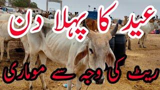 EID KA PHELA DIN   RATE KI WAJAH SE MOMARI   عید کا پہلا دن   ریٹ کی وجہ سے موماری   Animal Market