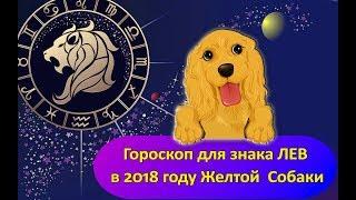 Гороскоп знака Зодиака ЛЕВ на 2018 год Желтой Собаки