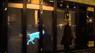 Pedigree Interactive Ghost Dog Installation