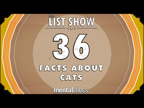 36 Facts About Cats  mental_floss List Show (Ep.221)