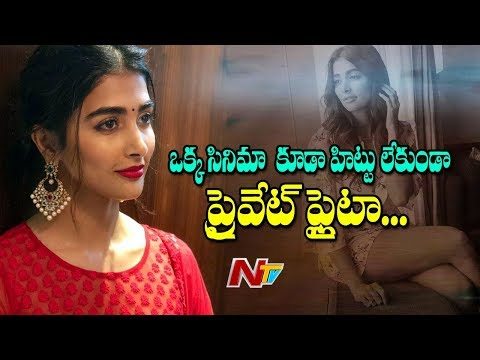Pooja Hegde Hires a Private Jet For NTR Aravinda Sametha Shooting | Box Office | NTV