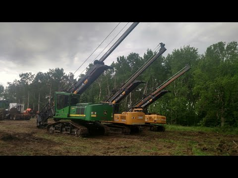 Mn Haley Logging Co. Highlights