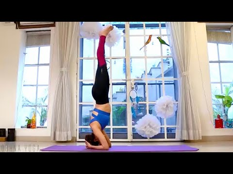 how to do headstand for beginners  shobhna yoga  yoga