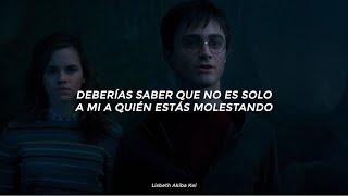 ... si te metes conmigo te metes con mi familia (tik tok)   Harry Potter 🎇