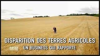 DISPARITION DES TERRES AGRICOLES, UN BUSINESS QUI RAPPORTE