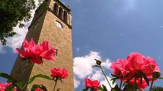 Campanile and flowers