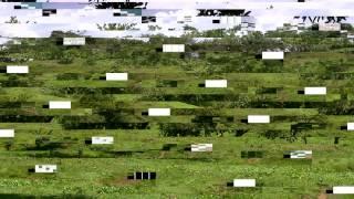 Se Rompio el Tanque - Banda Juvenil de Chocho