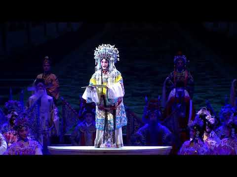 Traditional Chinese performances - 国色天香