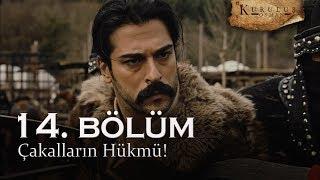 Çakalların hükmü - Kuruluş Osman 14. Bölüm