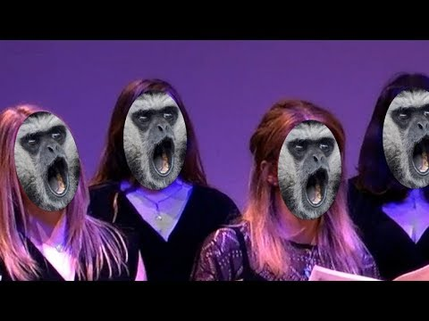 The School for Placental Mammals (Karaoke Version)